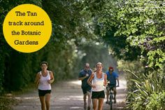 Run The Tan, Melbourne. Victorian Road Runners timed 4k and 8k first sat each month.