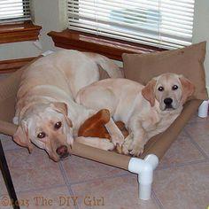 pvc dog cot tutorial, how to, plumbing