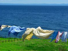 a clothes line in Newfoundland by LuciaB, still the best way to dry your laundry Laundry Drying, Doing Laundry, Blowin' In The Wind, Newfoundland And Labrador, Newfoundland Canada, Vintage Laundry, Summer Breeze, Go Green, Green Grass