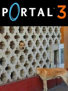 Now youre thinking with portals! #portal3  The post Portal 3 Is Out Now appeared first on Cool Strange.  #coolstrange #memes #hot #meme #funnymeme