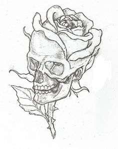 Simple skulls and roses drawings easy skull drawings, simple skull drawing, rose drawings, Calavera Simple, Desenho Tattoo, Skulls And Roses, Pencil Art, Art Sketches, Flower Sketches, Sleeve Tattoos, Tattoo Neck, Drawing Flowers