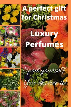 Tom Ford Luxury Perfumes are perfect gifts for Christmas! Give her/him a gift of love. Smell & Feel like a Celebrity! Tom Ford, Christmas Gifts, Fragrance, Perfume, Celebrity, Feelings, Luxury, Xmas Gifts, Christmas Presents