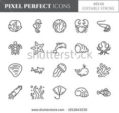 Marine theme pixel perfect thin line icons. Set of elements of fish shell crab shark dolphin turtle and other sea creatures related pictograms. Line Drawing Tattoos, Tattoo Drawings, Bullet Journal Ideas Pages, Bullet Journal Inspiration, Crab Tattoo, Shell Tattoos, Dolphins Tattoo, Pictogram, Line Icon