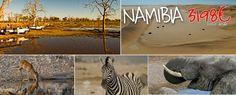 14 días en el cálido sur de África