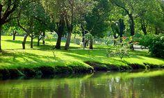 ibirapuera-park-sao-paulo-outdoor.jpg (800×481)