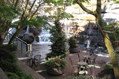 Waterfall Garden Park provides a calm oasis in the heart of the city. Photo: Basic Sounds