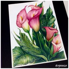 WIP World of Flowers de Johanna Basford - colorindonamadrugada johannabasford worldofflowers rpenze coloringbook coloringbooks…
