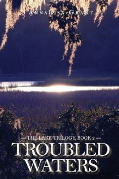 Troubled Waters: The Lake Trilogy by AnnaLisa Grant http://www.amazon.com/dp/1483983366/ref=cm_sw_r_pi_dp_lEO6tb0DBQFZX