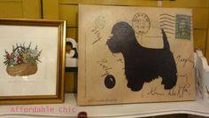 Black dog picture.