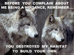 Before you complain about me being a nuisance, remember you DESTROYED MY HABITAT to build your own.