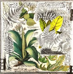 constance rose : art and life: Autumn News Nature Collage, Collage Art Mixed Media, Gcse Art Sketchbook, Sketchbooks, Nature Sketch, Art Portfolio, Animal Quotes, Mail Art, Art Inspo