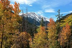 Wild and Wonderful: Take Your Family to Estes Park [Photo by Rainer Jenss]