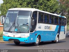 Ônibus da empresa Cattani Sul Transportes e Turismo, carro 41593, carroceria Marcopolo Viaggio G6 1050, chassi Mercedes-Benz OF-1722M. Foto na cidade de Foz do Iguaçu-PR por Luis Scariot Passo Fundo/RS, publicada em 30/10/2011 16:16:19.