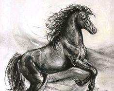 Original horse charcoal drawing-original by FerraroFineArt on Etsy Horse Illustration, Beauty Illustration, Charcoal Portraits, Pet Portraits, Paintings For Sale, Original Paintings, Charcoal Drawing Tutorial, Charcoal Paint, Horse Art