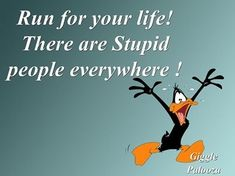 stupid people everywhere funny quotes quote lol funny quote funny quotes looney tunes daffy duck humor