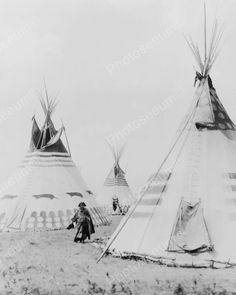 ndian Woman Walks Amid Huge Teepees! 8x10 Reprint Of Old Photo