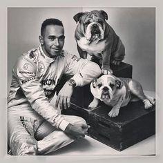 superstar Lewis Hamilton & his dogs Coco and Roscoe F1 Lewis Hamilton, Lewis Hamilton Formula 1, Ricciardo F1, Daniel Ricciardo, Bulldogs Ingles, British Bulldog, Dogs Of The World, Formula One, Yorkie