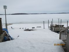 Docks in and Winter has arrived Wind Turbine, Wildlife, Cottage, Snow, Winter, Outdoor, Outdoors, Casa De Campo, Cottages