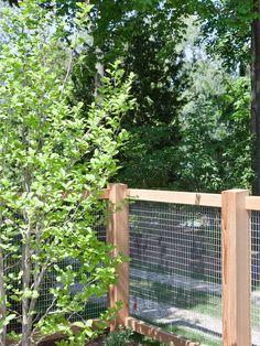 Vegetable Garden Fencing Ideas for Your Inspiration: Vegetable Garden Fencing Ideas For Contemporary Landscape ~ spoond.com Exterior Design Inspiration