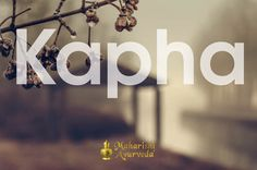 Food Guidelines for Kapha Dosha   Maharishi Ayurveda #mapi.com