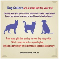 Place order for Dog Collars in Australia - Your pet can follow the latest fashion trends with our exclusive range of smart dog collars. We offer designer dog collars for your special friend. Buy dog collars online in Australia at Lush Pets where the exclusive designs will both tempt and delight yo Visit Today at http://www.lushpets.com.au/dog-collars/