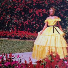 "This vintage postcard features a beautiful Southern Belle clad in a yellow hoop skirt basks in the sunlight, posing for cameras. She knows after all that ""Colorful and tropical flowers are everywhere in beautiful Florida Cypress Gardens'."