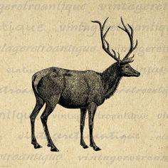 Digital Image Elk Deer Animal Printable by VintageRetroAntique