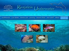 Kwajalein Underwater - marine life in the Marshall Islands. Some of the most beautiful, vibrant fish, shells and coral I've ever seen.