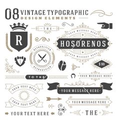 Retro vintage typographic design elements vector