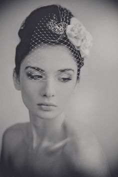 Beautiful birdcage veil.