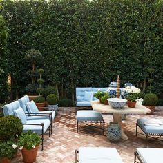 Good morning, Sundays are always welcomed! #gardengreen #mdsgarden #beautifulbook #lifeisbeautiful