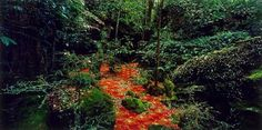 Rosemary Laing (Australia ) Title groundspeed (Red Piazza) Year 2001 Media category Photograph Materials used type C photograph Edition Dimensions x image;