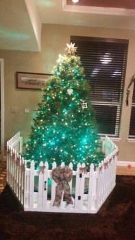 9 Beaming Tips AND Tricks: Wood Fence Kickboard Wooden Fence Vs Vinyl.Unique Backyard Fence Fence Ideas To Keep Dog Out Of Garden.Fence Your Ideas. Christmas Tree Fence, Xmas Tree, Winter Christmas, Christmas Home, Merry Christmas, Christmas Ideas, Holiday Ideas, Christmas Things, Country Christmas