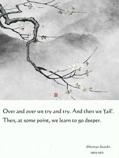 And then we 'fail'. Then, at some point, we learn to go deeper. Suzuki we learn to go deeper. Zen Quotes, Small Quotes, Meditation Quotes, Uplifting Quotes, Strong Quotes, Poetry Quotes, Qoutes, Life Quotes, Inspirational Quotes