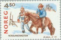 Northlands horse