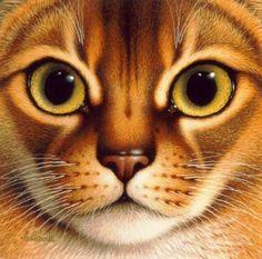 Картины Brald Brads с кошками. :: Кошачий портал. Фото кошек, картинки с кошками