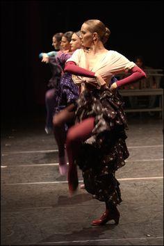 """Flamenco On my board """"Dance is my Soul II"""". Irit Volgel)"""