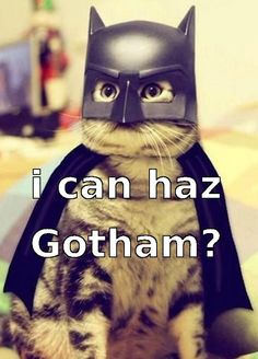 I haz gothamz and stuff?