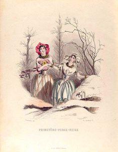 "NY Public Library, rare books/digitized ""fleurs animées"" 31. Primevère, Perce-Neige. [Primrose, Snow drop]"