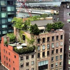 Garden on top of an abandoned building - Dream!