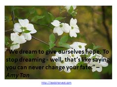 """""""We dream to give ourselves hope. To stop dreaming - well, that's like saying you can never change your fate."""" –Amy Tan"""