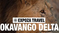 Travel video about nature park Okavango Delta in Africa. Even for the African continent that is blessed with numerous beautiful natural landscapes, the Okava. Vacation Trips, Vacation Travel, Okavango Delta, Travel Videos, Best Sites, Africa Travel, Continents, Youtube, Youtubers