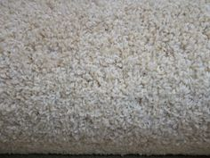 Wall-to-Wall Carpeting 175820: Wall To Wall Carpet Disco Cream -> BUY IT NOW ONLY: $99 on eBay!