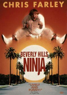 Um Ninja da Pesada (1997)