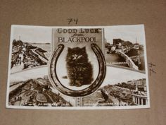 Good Luck Blackpool Black Cat Multiview Garden NS Promenade Beach Horseshoe hole