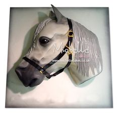 "For Jenny - This one actually looks my brothers old pony Beauty! White Horse Cake ""White Horse"" I want that cake!"