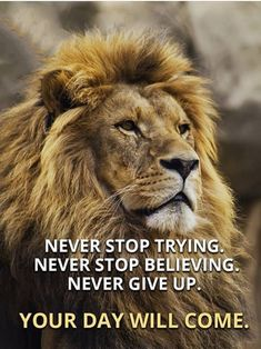 68 Motivational Inspirational Quotes For Success 48 Motivational quotes to be successful in any field such as business,life,gym,job or as a student. Badass Quotes, Good Life Quotes, Inspiring Quotes About Life, Wisdom Quotes, True Quotes, Success Quotes, Sport Quotes, Qoutes, Best Quotes Of All Time