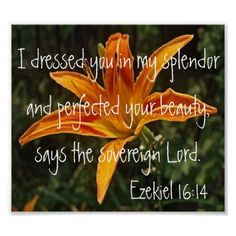 Shop tiger lily bible verse Ezekiel Poster created by LPFedorchak. Healing Scriptures, Bible Scriptures, Bible Quotes, Cool Phrases, Lilies Of The Field, Bloom Where Youre Planted, He First Loved Us, Christian Posters, Uplifting Words