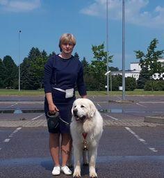 Маркиз Получил Чемпиона Литвы Shepherd Dog, Labrador Retriever, Polish, Dogs, Animals, Labrador Retrievers, Animais, Animales, Varnishes