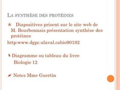 La synthèse des protéines> Transcription, Acide Aminé, Expressions, About Me Blog, Writing, Hydrogen Bond, Double Helix, Biology